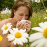 Domena o alergiach – tekst dla alergików